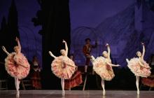 Past_exhib_film_ballet_donquixote