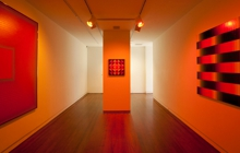 Past_exhib_exhibition_inquiring-finds_orange-room