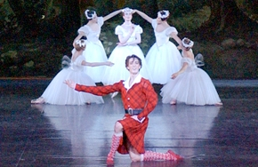 Partial_wide_featurebox_ballet_lasylphide