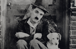 Partial_wide_featurebox_chaplin_adogslife01
