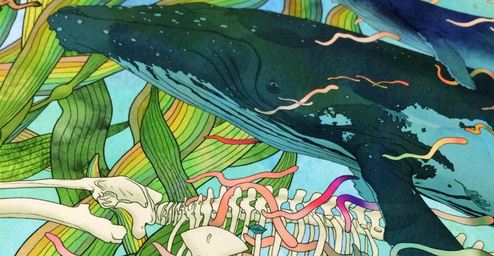 Exhib_slideshow_exhibition_kozyndan_world-oceans-day
