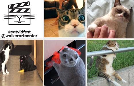 Featured_exhib_film__catvidfest_collage