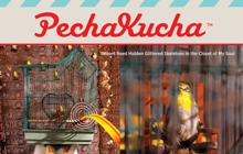 Past_exhib_event_pechakucha21