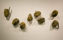 Past_exhib_tour_loomless_livingstone