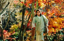 Past_exhib_film_seoulcinemaff2015_paintedfire