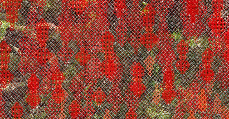 Exhib_slideshow_alison-moritsugu_detail