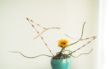 Past_exhib_ikebana_carole_01