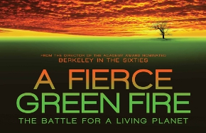 Partial_wide_featurebox_fierce_green_fire2