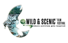 Past_exhib_film_wild-scenic2013